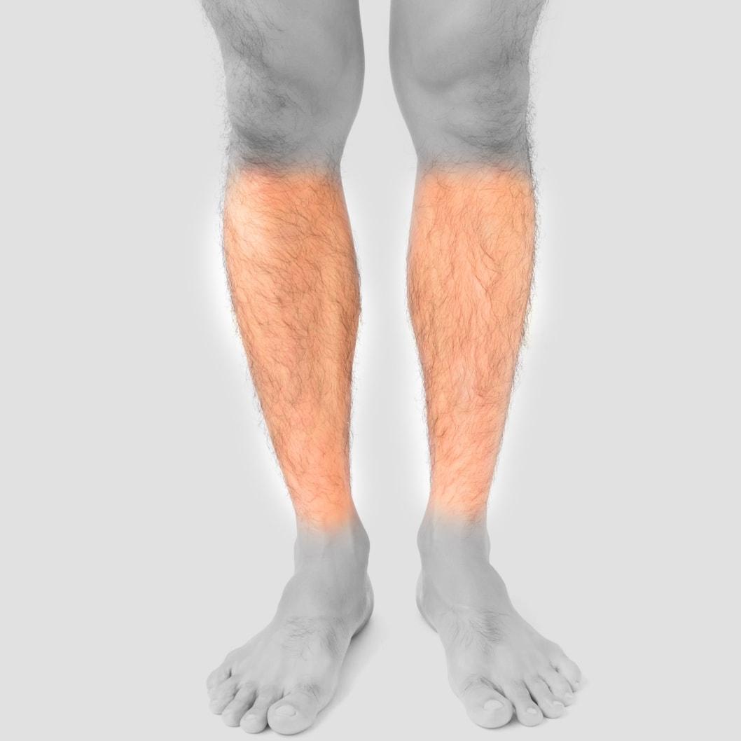 Lower Legs